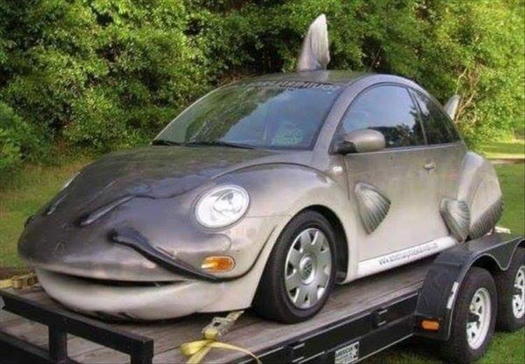 Fish Bug